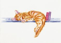 """ORIGINAL WATERCOLOUR PAINTING: KITTENS  FOXES HENS  HARES / CATS: """"BOOK END"""""""