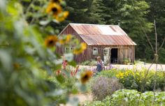 Blackberry Farm: What to do at Blackberry in August