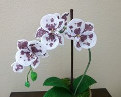 French Beaded Moth Orchid Handmade par LaurenHCreations sur Etsy