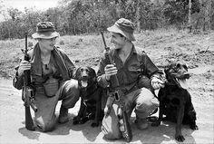 Australian soldiers with tracker dogs - Vietnam - 1967. #VietnamWarMemories
