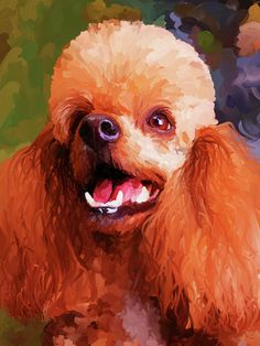 Apricot Poodle Painting by Jai Johnson Poodles, Poodle Drawing, Pastel Portraits, Dog Paintings, Watercolor Animals, Dog Art, Painting Inspiration, Cute Dogs, Illustration Art