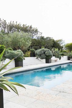 Gorgeous backyard Malibu landscape with lots of greenery and swimming pool