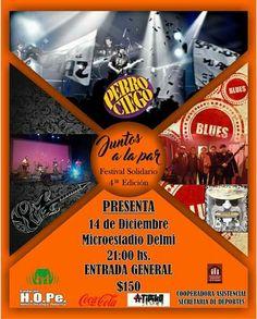 """""""Juntos a la Par"""", Fundación HOPe: Se viene el 4º Festival de Blues a beneficio de la Fundación: Será el 14 de diciembre a partir de las 21…"""