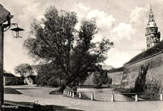 Krongborg voldgraven