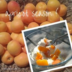 ★ Hooray - it's apricot season! ★ #apricots #greekyogurt #cyprus https://plus.google.com/+PissouribayCyp/posts/HsUhk72PxMk