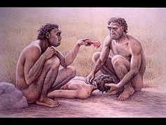 DE LAS BACTERIAS AL SER HUMANO: EVOLUCIÓN BIOLÓGICA