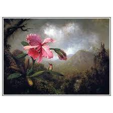 Martin Johnson Heade Orchid and Hummingbird near a Mountain Waterfall 1902 - Google Search