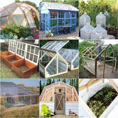 12 amazing DIY sheds and greenhouses: how to create beautiful backyard offices, studios and garden rooms with reclaimed windows and other materials. Outdoor Greenhouse, Cheap Greenhouse, Backyard Greenhouse, Greenhouse Plans, Portable Greenhouse, Pallet Greenhouse, Homemade Greenhouse, Reclaimed Windows, Backyard Office