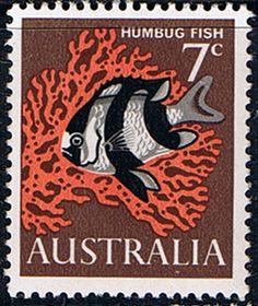 Australia 1966 SG 388 Humbug Fish Fine Mint SG 388 Scott 402 Other Australian Stamps HERE