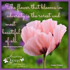 16 Best Famous Floral Quotes Images Words Inspirational Qoutes