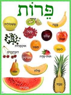 The main benefit of learning a second language is that of being able to communicate with others in their native language. Hebrew is considered to be one of the most difficult languages to learn and requires a lot of study but once mas Israel, Learning A Second Language, Hebrew School, Hebrew Words, Biblical Hebrew, Learn Hebrew, Word Study, Judaism, Teaching