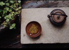 酒能祛百虑 菊饮制颓龄chrysanthemum tea