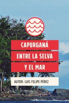 Primero lo primero, la ubicación, Capurganá es un corregimiento de Acandí, un municipio que queda al norte del Chocó, justo en el golfo de Urabá y muy cerca de la frontera con Panamá. Travel Destinations, Travel Tips, Travelling, Places To Go, Trips, Club, Random, Colombian Food, Wanderlust