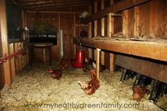 Inside Our Chicken Coop: Lessons learned, Key Features and Tips. VERY informative on building and maintaining and keeping your coop and Chickens safe and well fed watered and healthy! Backyard Chicken Coops, Chicken Coop Plans, Chickens Backyard, Chicken Coup, Chicken Lady, Keeping Chickens, Raising Chickens, Pet Chickens, Farms Living