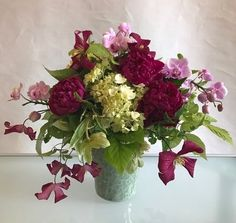 CLEMATIS EDITH-Superb Personalised Plant /& Flower Gifts For All Occasions