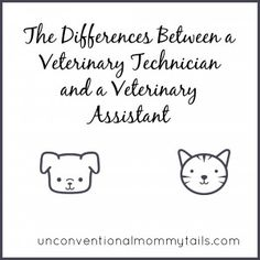 The differences between a veterinary technician and a veterinary assistant!