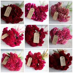 I like how Floret Flower Farm tagged each bouquet, and of course, they are beautifully photographed and arranged.