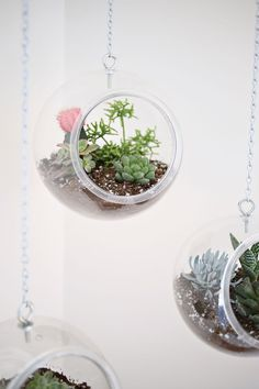 Maker Crate - Hanging Fishbowl Planters