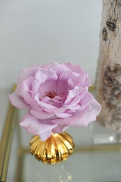 purple rose with gold vase from @Emily Schuman / Cupcakes and Cashmere