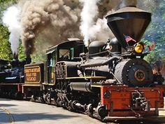 Sugar Pine Railroad / Yosemite: Just outside the park, the lumbering steam train takes passengers on a four-mile, one-hour tour through the forest. Dog owners, take note: Lady Macbark has a free ticket to ride.