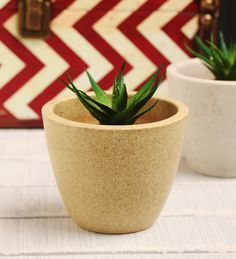 Decardo Beige Ceramic Table Top Planter