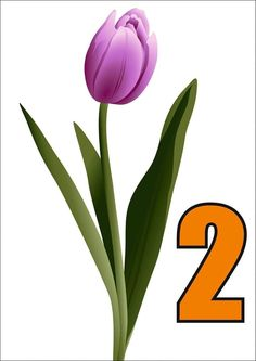 Spring Activities, Jar, Plants, School, Tejido, Paintings, Plant, Jars, Glass
