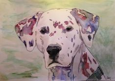 Dalmatinerporträt in Aquarell Portraits, Dogs, Animals, Art, Watercolour, Draw, Photo Illustration, Art Background, Animales