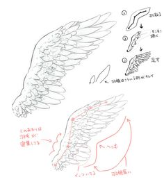 🌸~Credits to the artist for these beautiful wings~🌸 Drawing Skills, Drawing Techniques, Drawing Tips, Drawing Sketches, My Drawings, Wings Drawing, Body Drawing, Drawing Base, Art Reference Poses