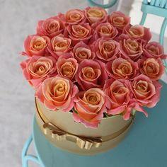 World of Flowers Amazing Flowers, Beautiful Roses, Fresh Flowers, Beautiful Flowers, Flower Boxes, My Flower, Bouquet Box, Fresh Strawberry Cake, Bloom Baby