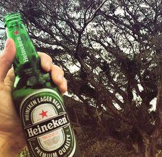 Cerveja Holandesa