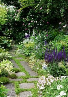 Getting lost in the garden.