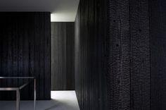 Carbonised Cedar Cladding • Unagi • Yanagawa • Toru Shimokawa • 2010