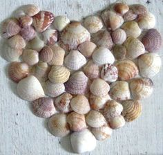 sea shell hearts  Perfect for DD's bedroom?