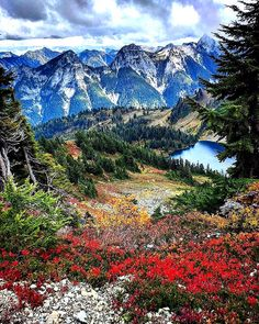 Winchester Mountain,WA