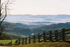 Naturalists Will Rally around the Highest Point in Virginia.  That highest point would be Mt. Rogers, at 5729 feet (1746 meters) on the Grayson/Smyth county line. (A.T.)