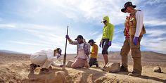 Nasa ensaya en el norte de Chile dónde buscar vida en futuras misiones a Marte