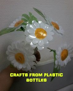 Crafts from plastic bottles