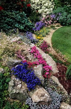 Chelsea FS 2001. Design: Paul Stone. Alpine rock garden withGentiana verna. Rhodohypoxis baurii cultivars. Phlox subulata. Veronica, by John Glover.