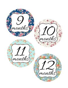 Baby Monthly Stickers - Shabby Chic - Months 1 though 12  Baby Month Stickers are a great way to capture your little ones growth through the