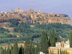 Orvieto, the most beautiful place I've ever been.