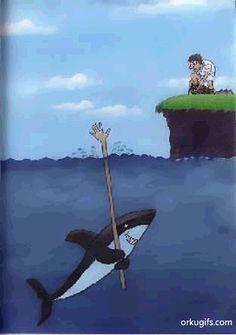 Como um tubarão captura suas presas
