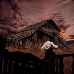 Home sweet home by Caras Lonut :)