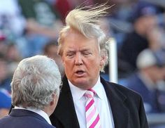 37 Funny Pictures, Oh Yes, You Will Laugh Donald Trump hair surfer ~funny pictures Donald Trump Hair, Donald Trump Twitter, Donald Trump Funny, Memes Humor, Funny Memes, Ecards Humor, 9gag Funny, Funny Quotes, Satire