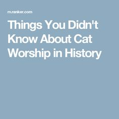 Things You Didn't Know About Cat Worship in History