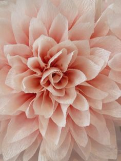 Large crepe paper flower wedding decor pinterest crepe paper large crepe paper flower wedding decor pinterest crepe paper crepes and flower mightylinksfo
