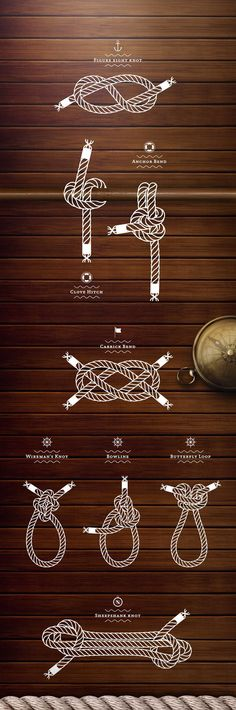 Sailing knots illustration.