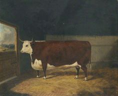 A Prize Cow in a Barn, 1875, by Richard Whitford (c.1821-1890)