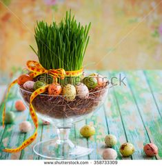 stock-photo-easter-composition-with-fresh-green-grass-and-chocolate-eggs-358733309.jpg (450×463)