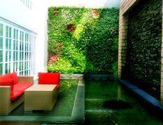 Vertical Garden Kelapa Gading Jakarta dibangun disekitar rumah dipadu dengan kolam dan furniture yang menawan menjadikan suasana lebih indah dan cocok untuk melepaskan lelah setelah seharian beraktifitas