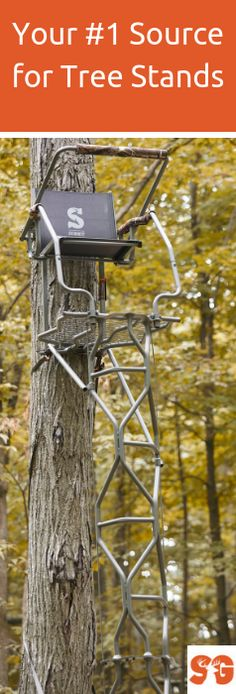 Ladder Stands, Climbing Stands, Hang-On & more from your favorite brands! Climbing Tree Stands, Ladder Tree Stands, Deer Hunting Tips, Bow Hunting, Hunting Stuff, Tree Stand Hunting, Best Ladder, Outdoor Survival Gear, Trout Fishing Tips
